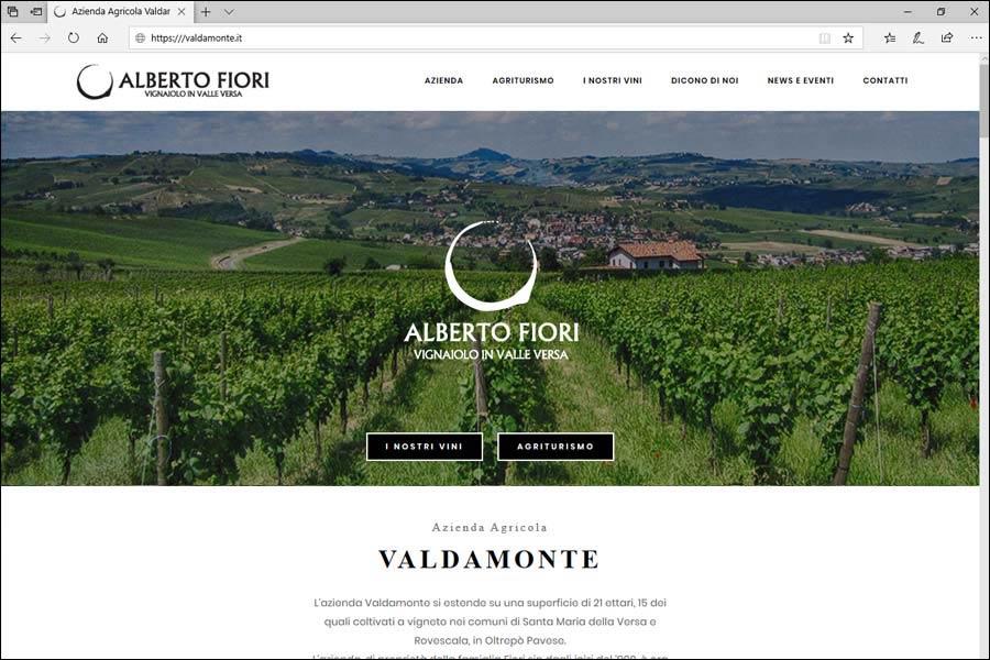 Screenshot del sito Valdamonte