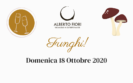 Funghi! (18/10/2020)