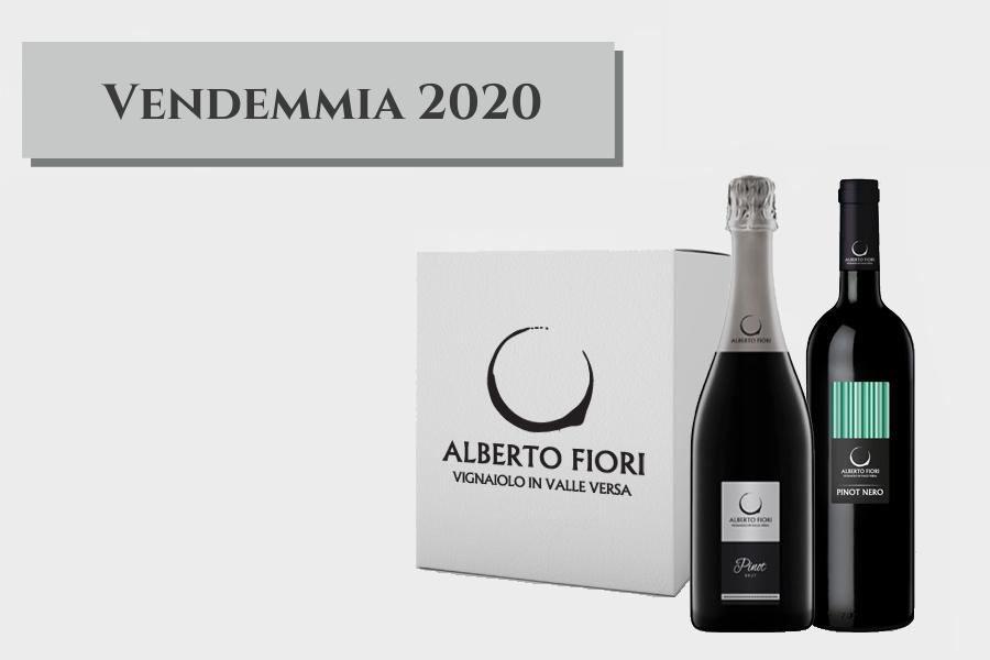Pinot Nero v/b frizzante 2020 e Spumante Brut