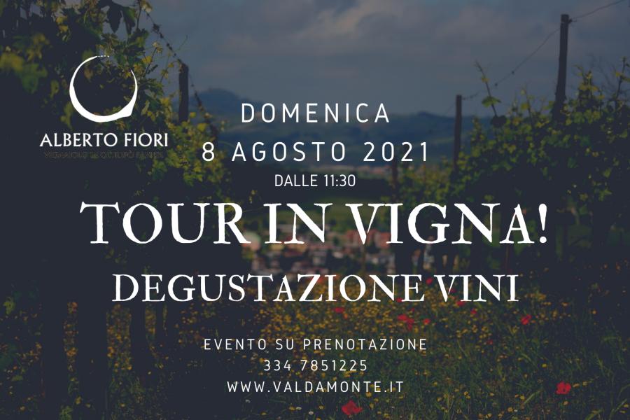 Tour in vigna con degustazione vini (08/08/2021)